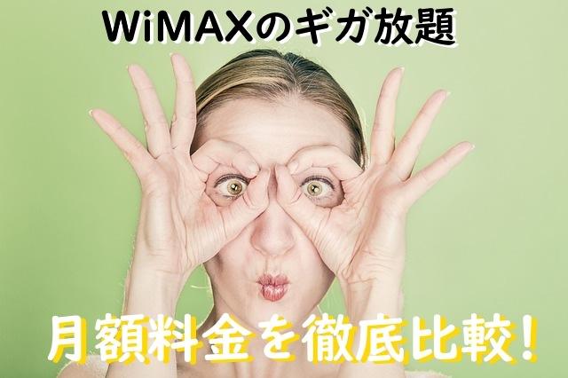 WiMAXのギガ放題・月額料金を徹底比較
